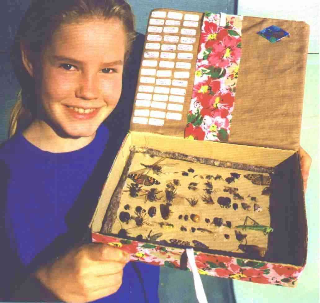 Girl holding a bug display